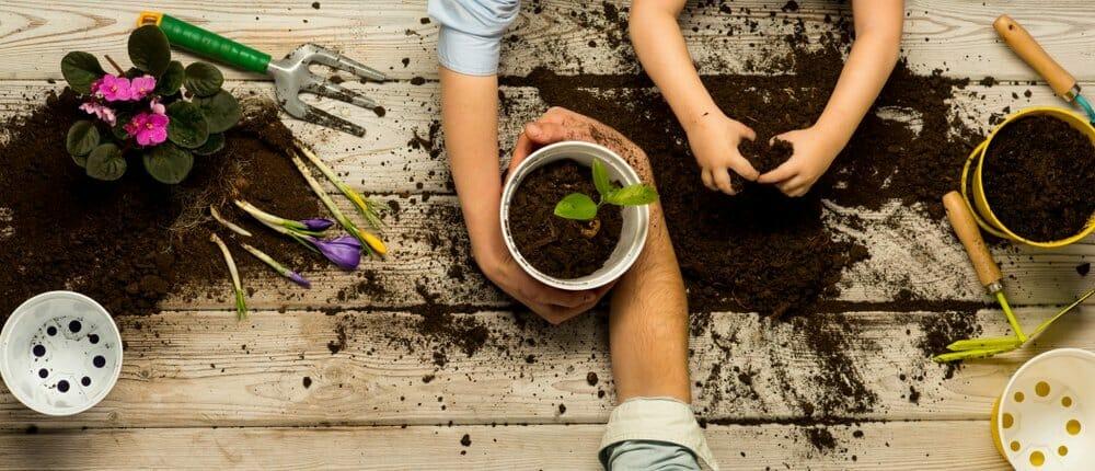 6 consejos para decorar tu jardín de forma económica